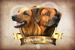 Koláž rhodesian ridgeback Conny Ann a Kevin