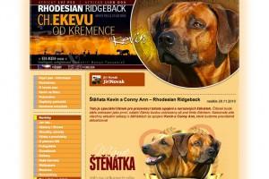Webové stránky našeho Ridgebacka Kevina - CH Ekevu od Křemence