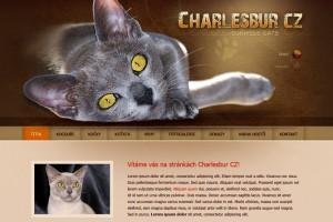 Webová stránky CHS Barmských koček