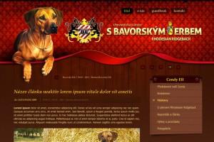 Web CHS S Bavorským erbem