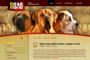 Web TISAO
