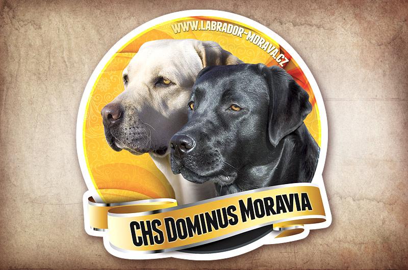 Samolepky na auto pro CHS Dominus Moravia