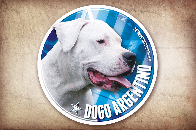 Samolepka na auto, Dogo Argentino