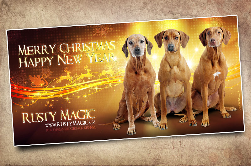 PF 2012 pro Rusty Magic Rhodesian Ridgeback