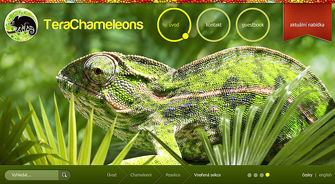 Web pro chovatele chameleonů, rhodesian ridgeback redesign