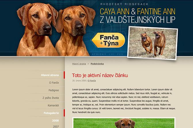 Redesign webu Fanča a Týna 2012