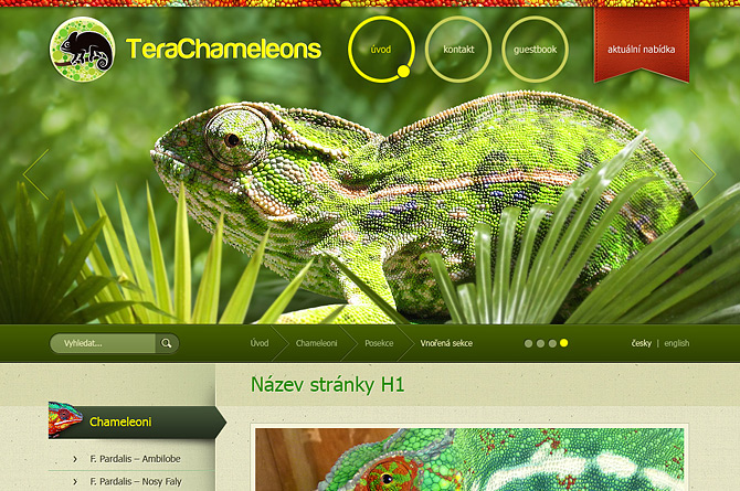TeraChameleons.com - web pro chovatele chameleonů