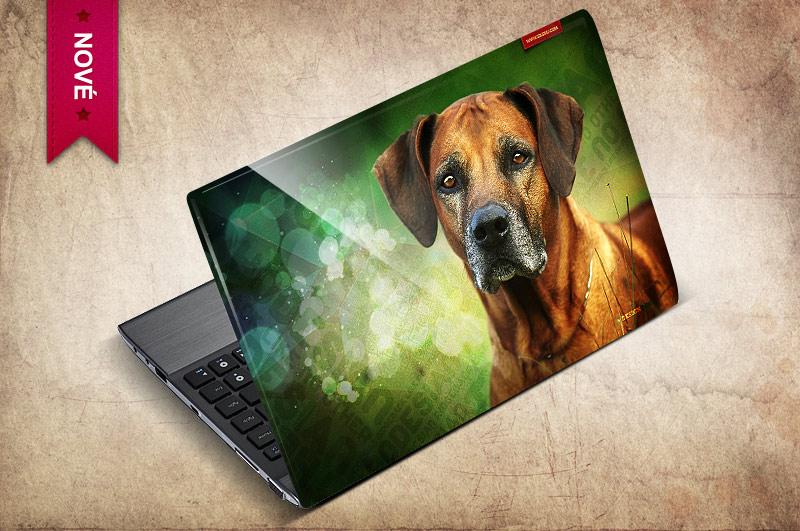 Samolepka na notebook s vaším obrázkem